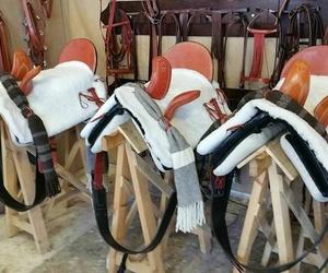 Sillas de montar y accesorios en Cádiz