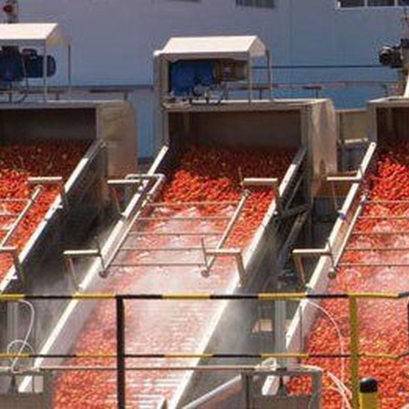 Industria alimentaria: Servicios de Coraex
