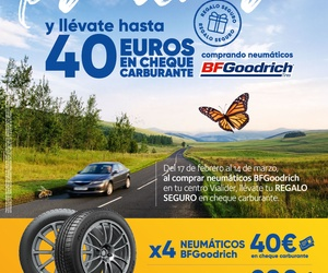 Promoción de neumáticos en Torrelaguna