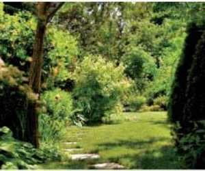 Galería de Jardines (diseño y mantenimiento) en Madrid | Xana