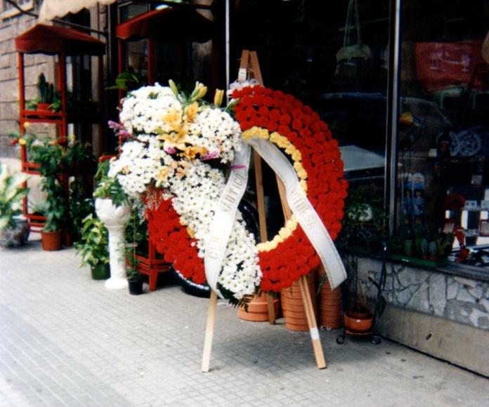 Coronas: CATÁLOGO de Floristería Iglesias