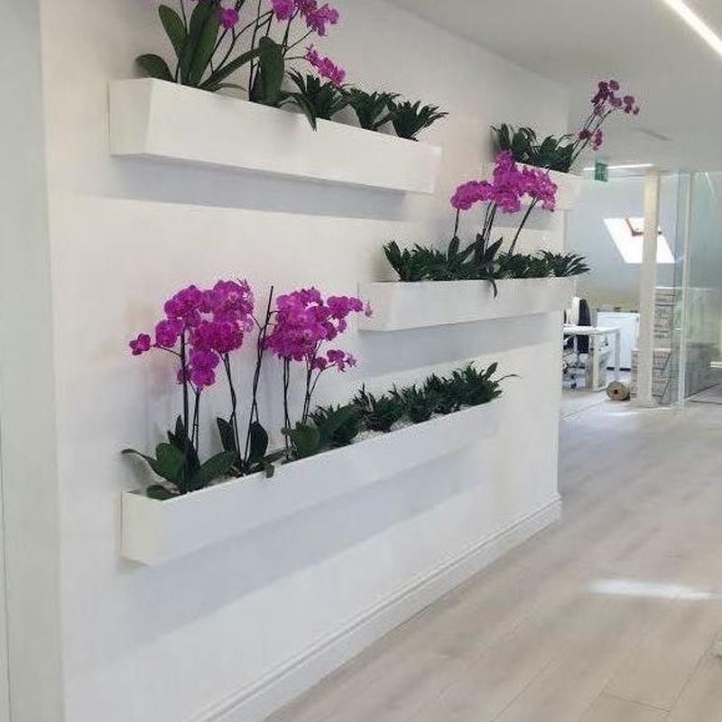 Jardineras de interior : Servicios y Productos de Cerrajería Avelino Izquierdo, S.L.