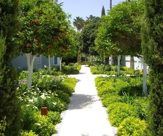 Jardines verticales: Servicios de Sotojardín