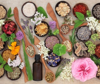 Acupuntura: Catálogo de Herbodietética Holísitca Juan Lorenzo