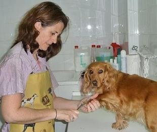 Profesionales de la estética e higiene