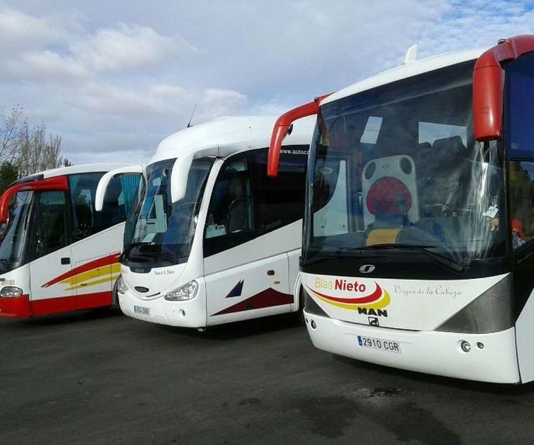 Ventajas de contar con autobuses para congresos