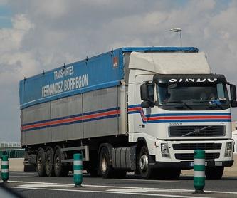 Transportes paletizados: Servicios de Transportes Fernández Borregón, S.A.