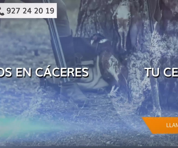 Certificado médico carnet conducir Cáceres