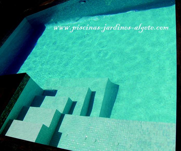 piscina de skimmers en Paracuellos del Jarama