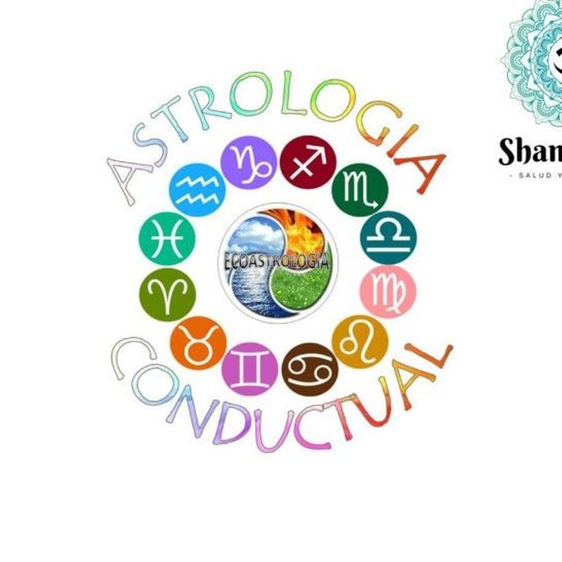 Taller 4 elementos - Astrología conductual: Servicios de Shambhala Salud y Bienestar