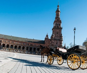 Tours turísticos por Sevilla en coche de caballos