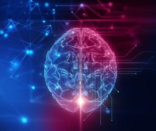 Recuperación lesiones neurológicas
