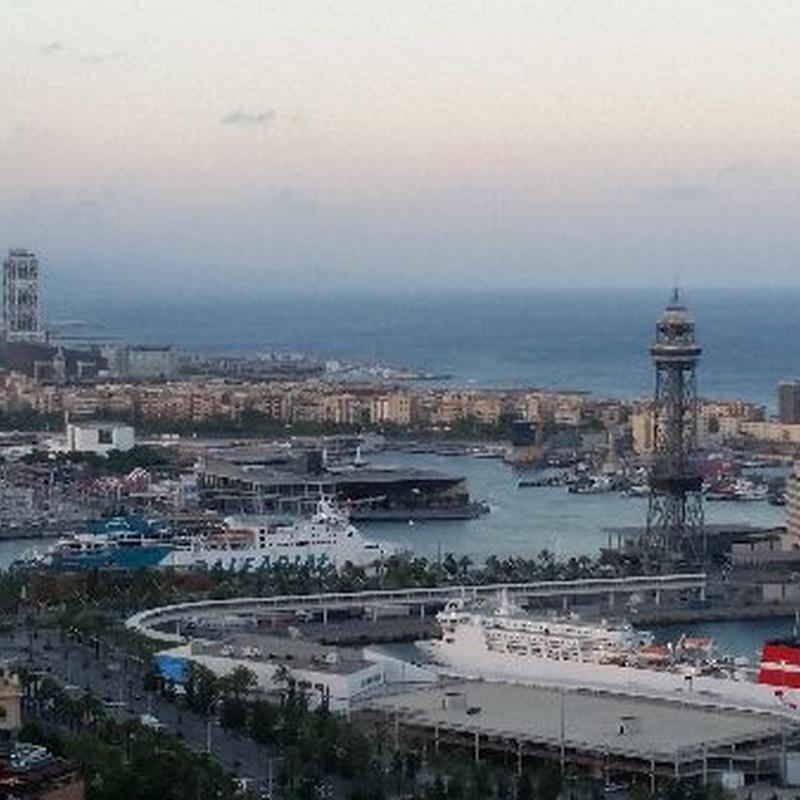 Transfers port of Barcelona: Services de Taxi Juan Carlos
