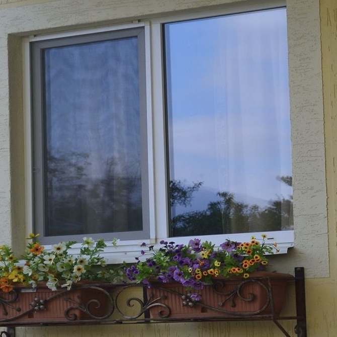 Consigue una casa más cómoda y agradable sin mosquitos