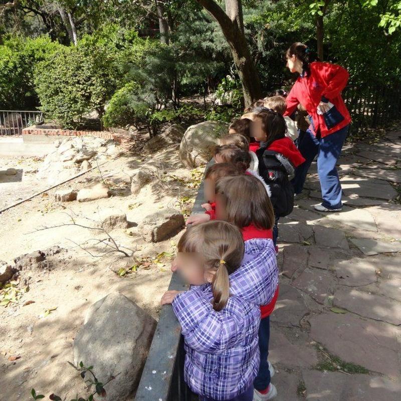 Actividades de granja-escuela: Actividades y Servicios de Mi Primer Cole