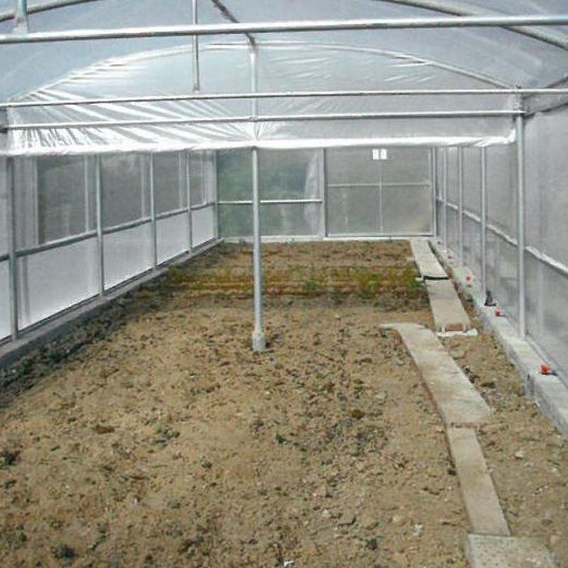 Mini Invernaderos: Invernaderos de Invernaderos Campos