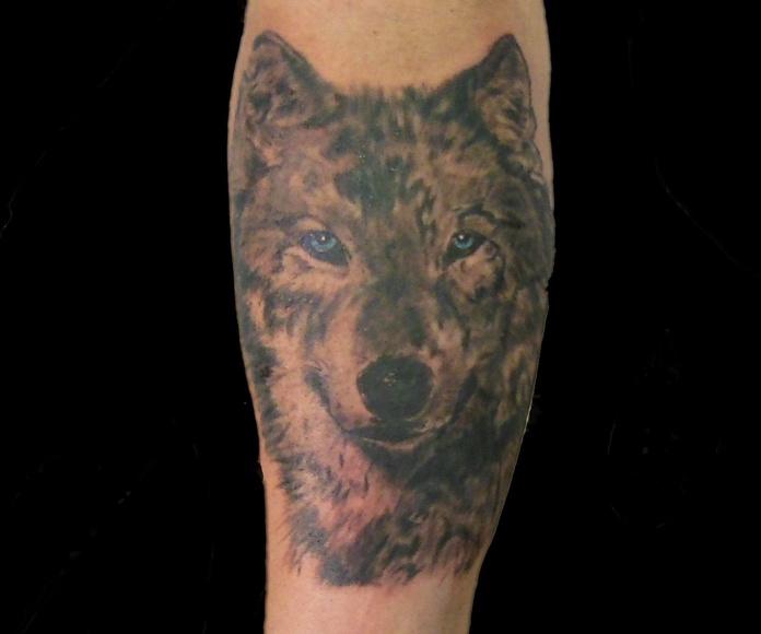Tatuaje lobo Chus Tattoo Logroño