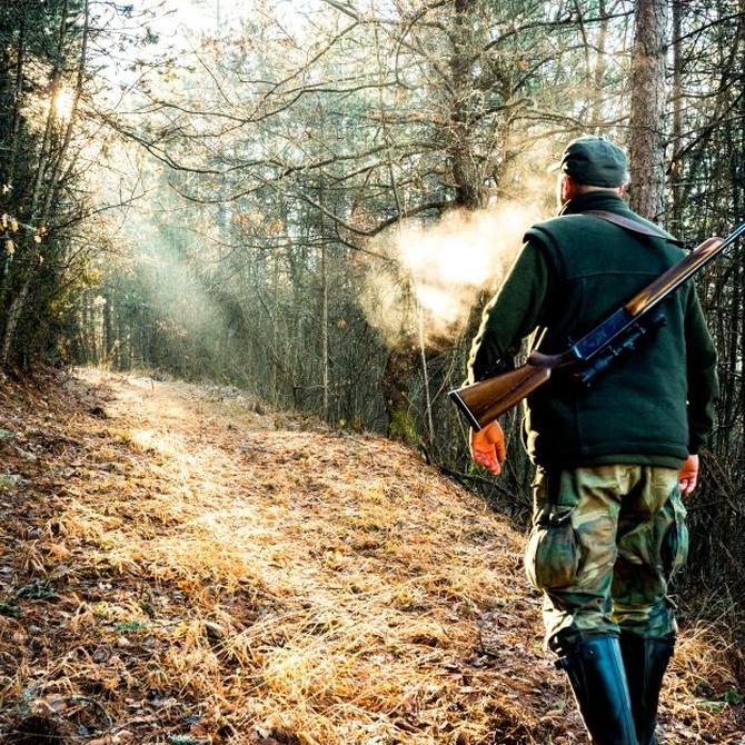 La caza es una actividad saludable y divertida, pero requiere de ciertas medidas de seguridad