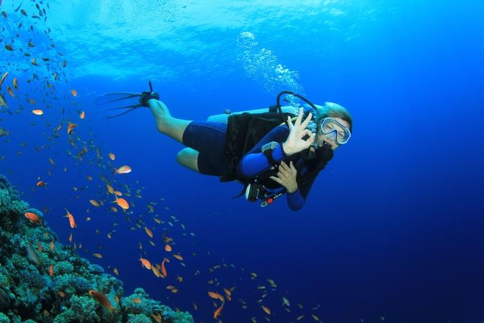 Buceo y pesca submarina: Servicios de Reconocimientos Médicos La Isleta