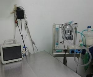 Clínica veterinaria Hortaleza