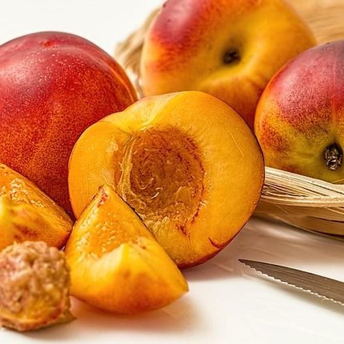 Alimentos recomendables para la salud de tu boca en verano