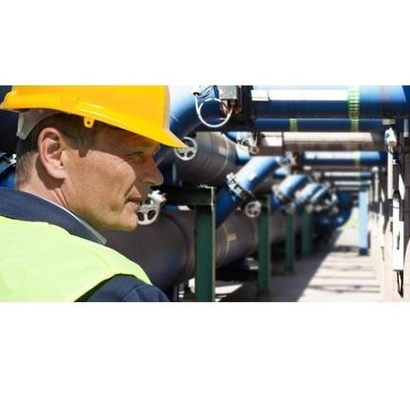 Gestor técnico: Servicios técnicos de Acción Servicios