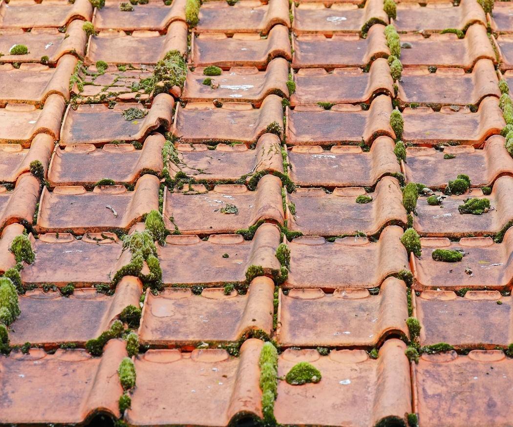 El mantenimiento del tejado