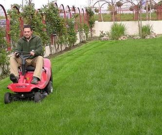 Socorristas: Servicios  de Jardinería Naranjo