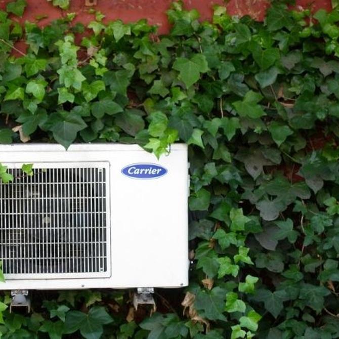 Alergias y aire acondicionado