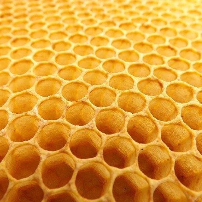 Usos tópicos de la miel