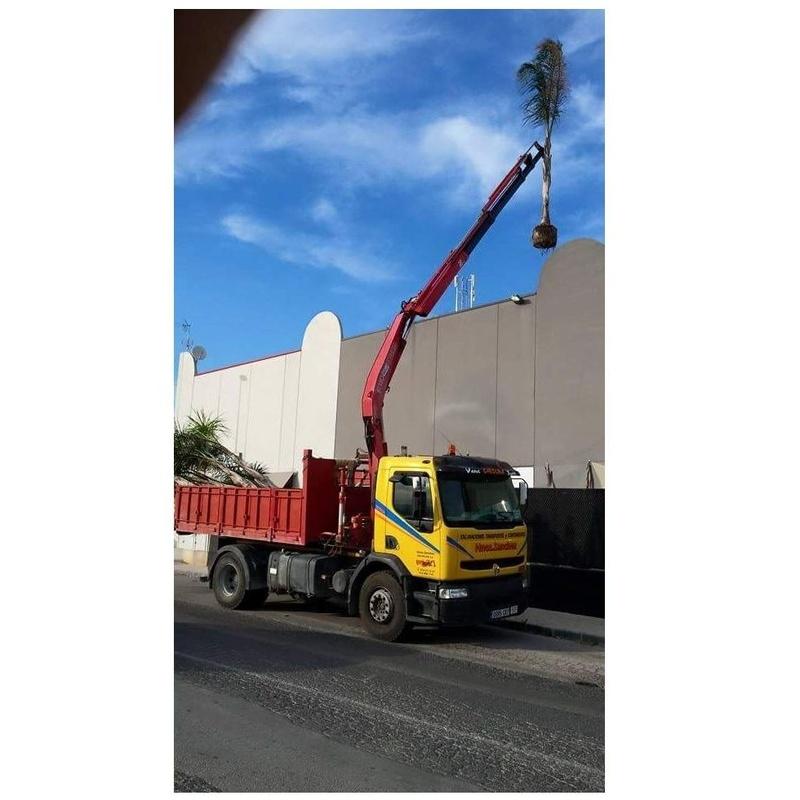 Servicio de grúa autocargante: Servicios de Hnos Sánchez Excaycon s.l.u.