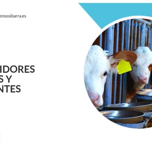 Fabricación y distribución de piensos en Elche | Ibarra