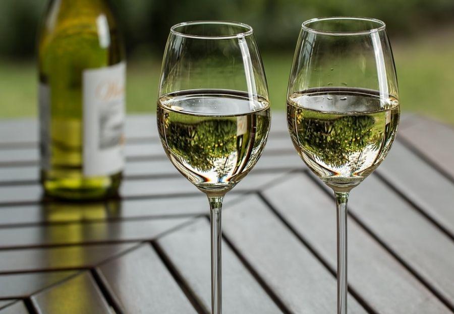 Los mejores vinos para el pescado