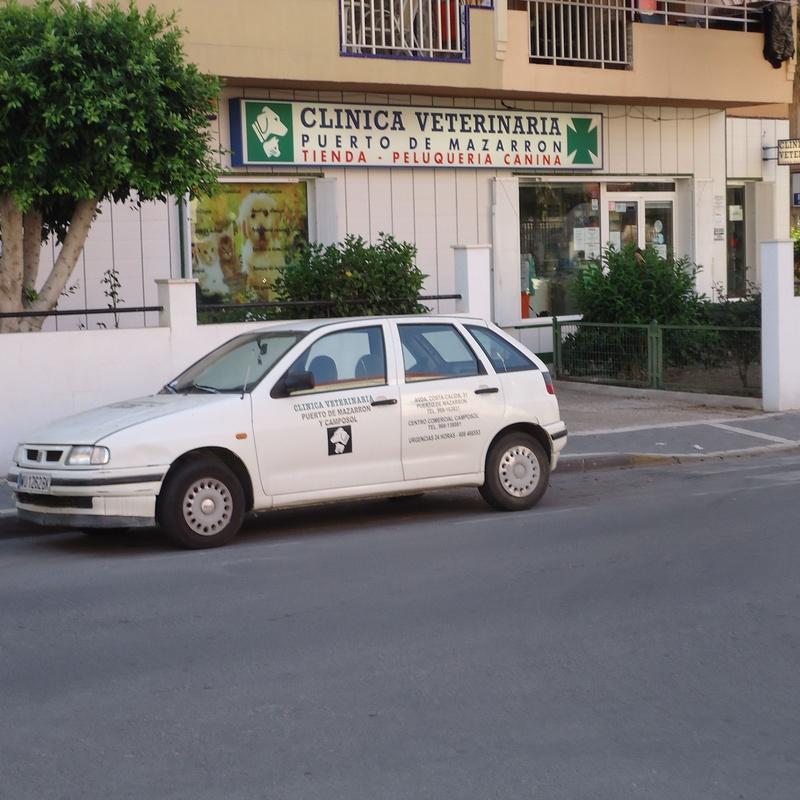 Servicio a domicilio: Servicios de Clínica principal Veterinaria Puerto Mazarrón