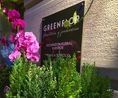 Winter flowers en Greenflor*