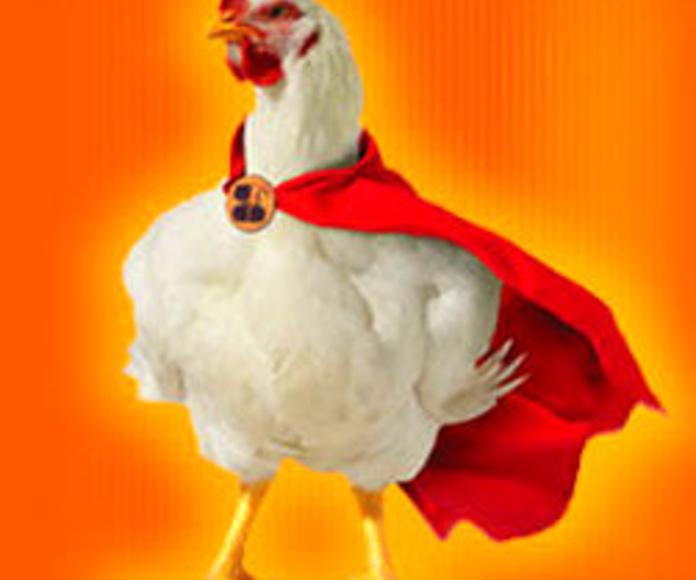 super pollo!