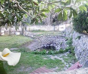 Jardinería en Jaén