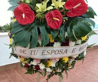 Lápidas mármol blanco carrera: Productos y servicios de Funeraria El Platero