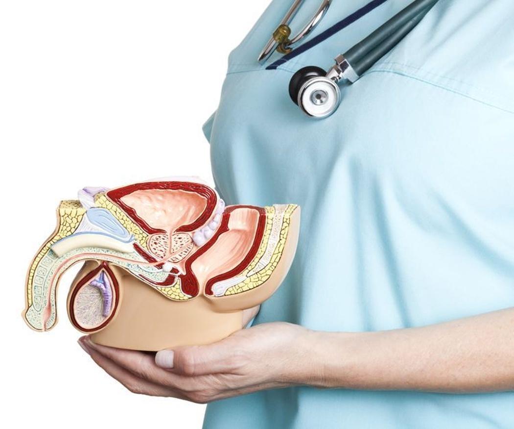 Respuestas a ciertas preguntas sobre urología