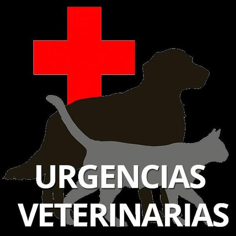 TELÉFONO DE URGENCIAS: Nuestros Servicios de Clínica Veterinaria Sant Marc