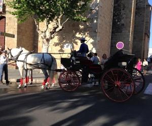 Alquiler de coches de caballos en Don Benito, Badajoz