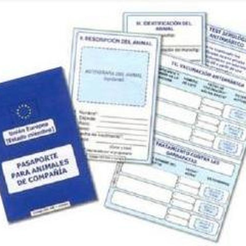 Microchips, certificados oficiales, pasaportes: Productos y servicios de Veterinario El Puertito