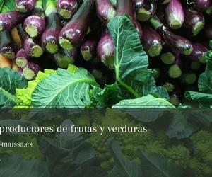 Tienda ecológica en A Coruña | Horta + Sá