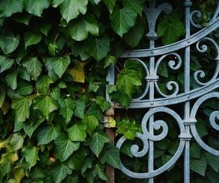 Cosas a tener en cuenta para la seguridad de tu hogar