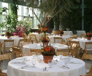 Alquiler de mobiliario para banquetes
