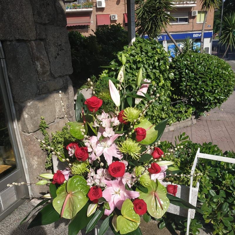 Peluches para acompañar: Productos y servicios   de Floristas San Isidro José