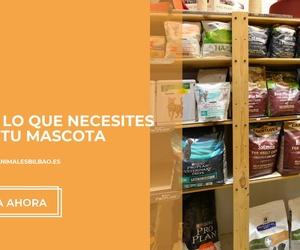 Tienda de animales en Bilbao | Centro Veterinario Mazarredo