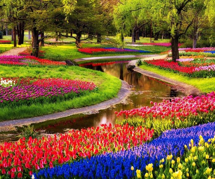 Jardinería corporativa: Servicios de Darobe Integral de Mantenimientos, S.L.