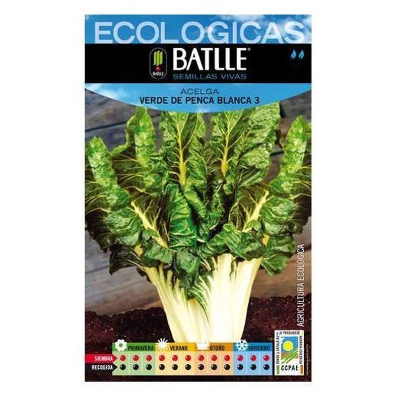 Semillas ecológicas de Acelga verde de penca blanca 3 Ref. 29