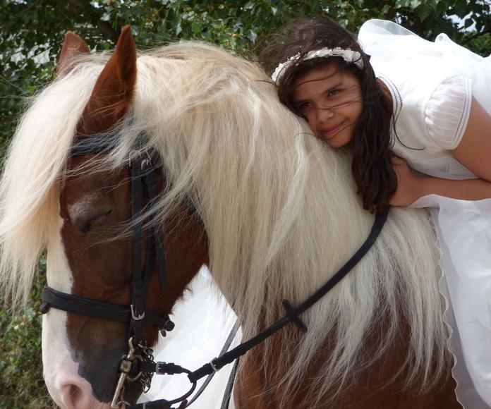 Sesiones fotográficas a caballo: Servicios de Hípica Riding School